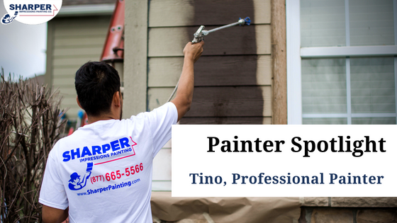 painter spotlight tino professional painter