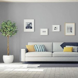 painting your living room gray